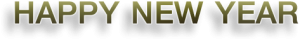 banner-newyear-2016-myideaplus-05-300x40 banner-newyear-2016-myideaplus-05